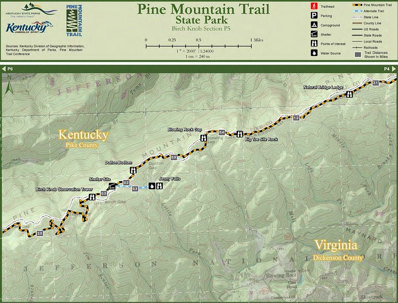 Pine Mountain State Scenic Trail -- Birch Knob Section (P5)