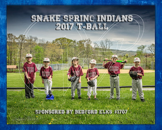 Snake Spring Indians 2017 TBall Eich