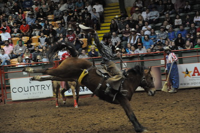 2-27-2016  Ft. Worth Rodeo