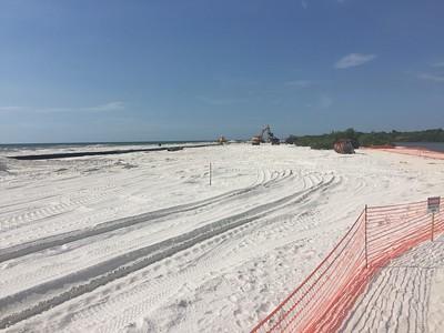 Honeymoon island beach project