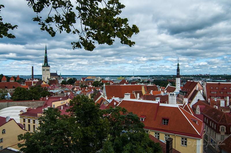 Estonia-Tallinn-1143.jpg