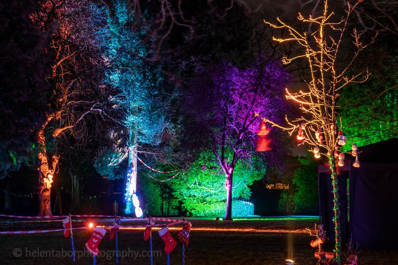 Illuminated Winter Wonderland by night-24.jpg