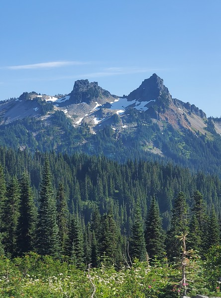 Mt. Rainier drive