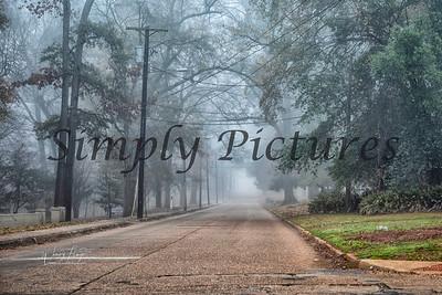 fog 0365
