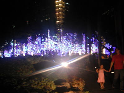 Dancing Christmas Lights at Ayala Triangle Park in Makati Philippines