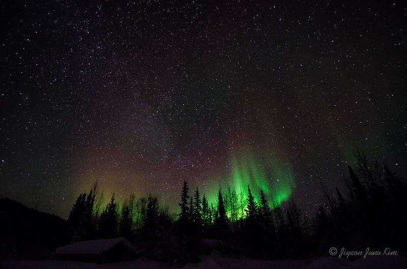 USA-Alaska-Wiseman-Aurora-2719.jpg