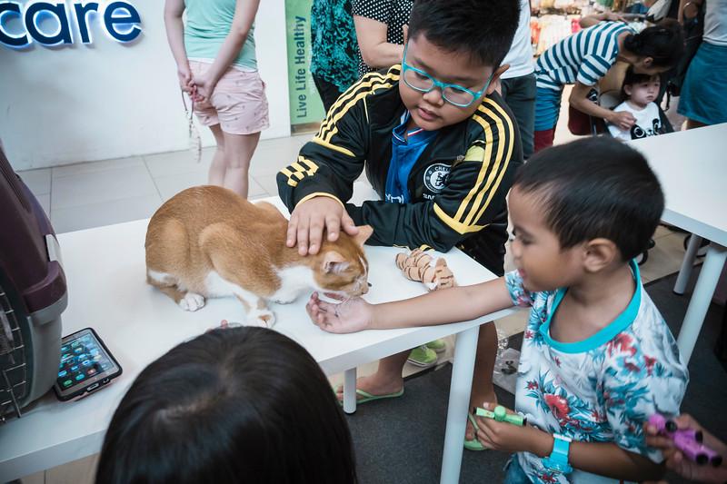 VividSnaps-The-Seletar-Mall-CAT-Dress-Up-Contest-021.jpg