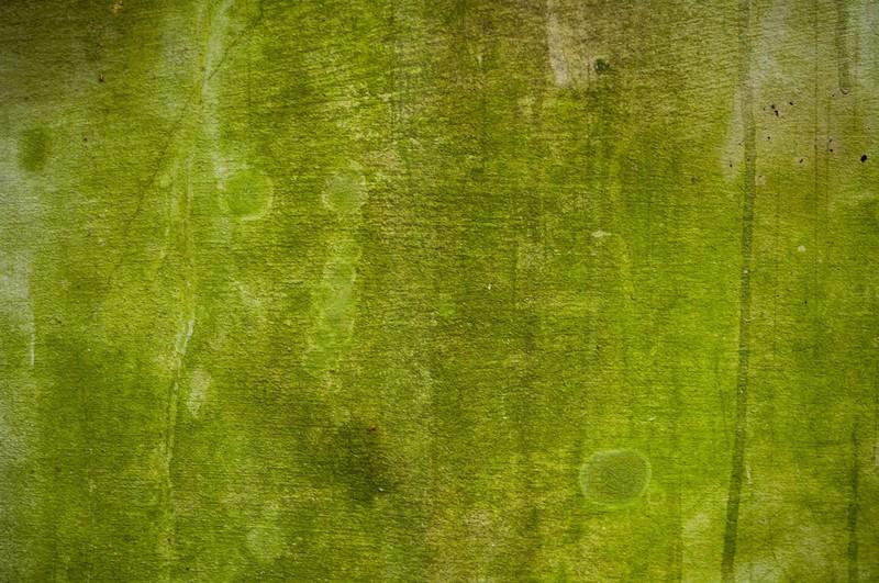 """Trey Ratcliff - <a href=""""http://www.StuckInCustoms.com"""">http://www.StuckInCustoms.com</a>"""