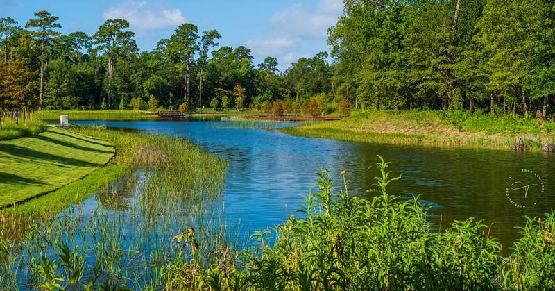 Memorial Park - Eastern Glades