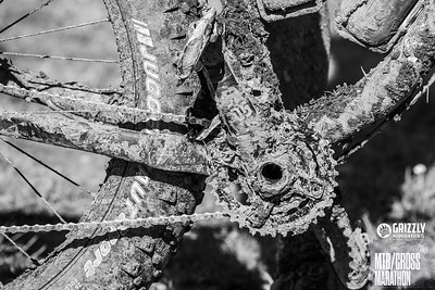 2019 Grizzly Ultra MTB PRE & Start