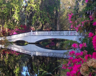 A Spring Celebration at Magnolia Plantation