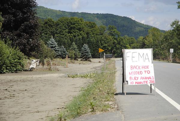 Woodstock Irene Damage