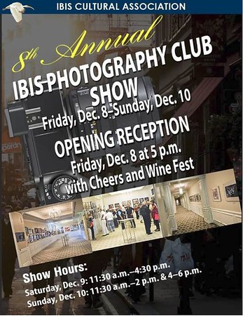 Photo Show Artwork -  December 2017