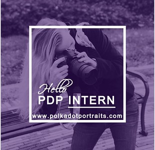 The PDP Intern Program Information