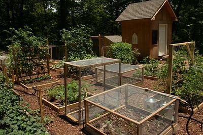 2010 - Garden
