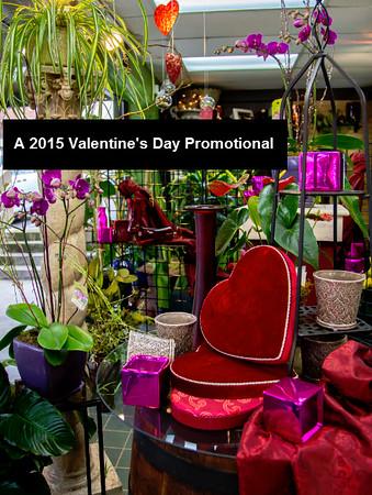 2015 Valentine's Day Promo