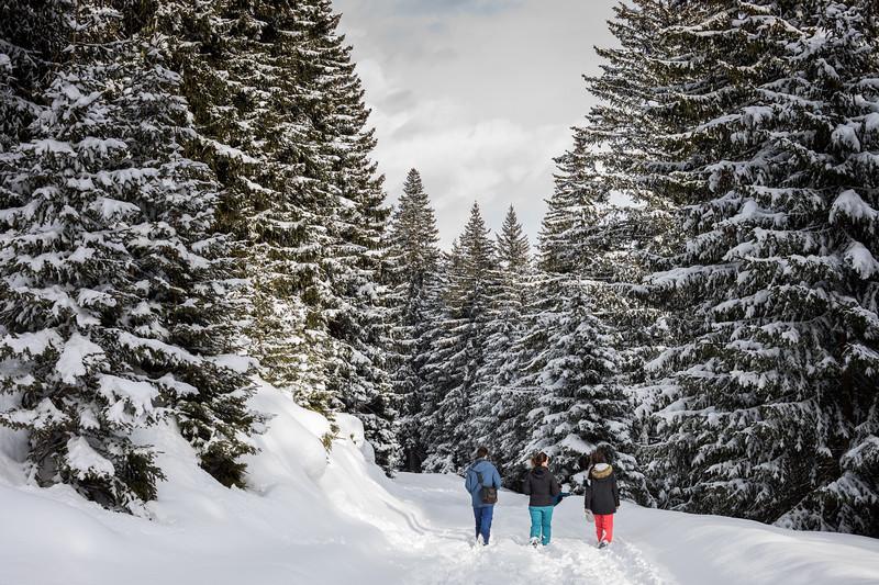 2018-Winter-6563.jpg