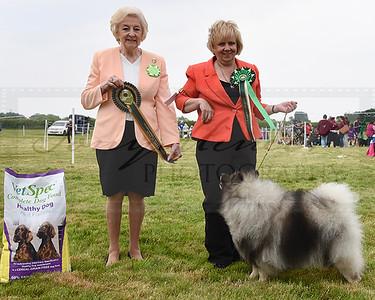 Derbyshire Agricultural Show 2019