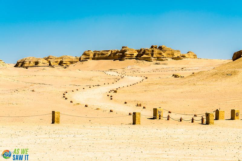 Wadi-El-Hitaan-02296.jpg