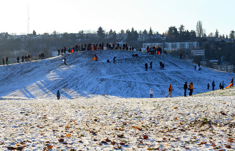 Gas Works Park is mobbed with sledders.