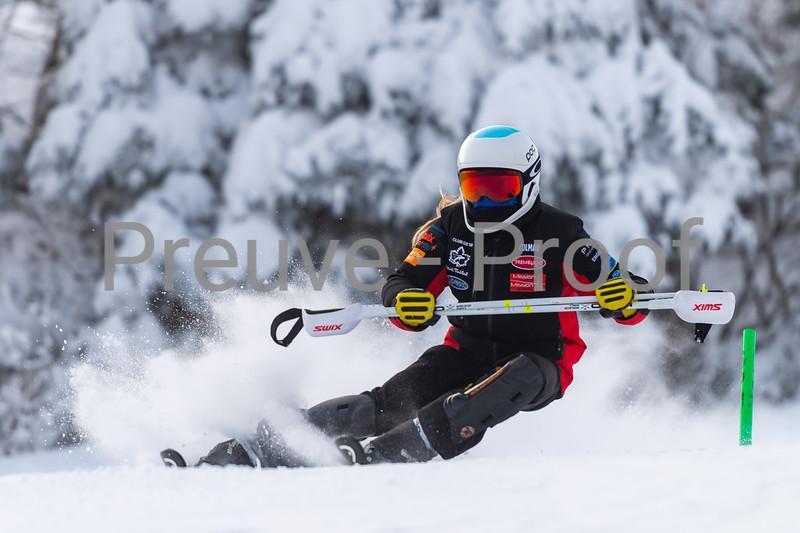 2021-01-19 Ski Étude SL Rigodon