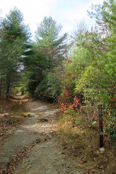 Panthertown Valley Trail - 3,730'