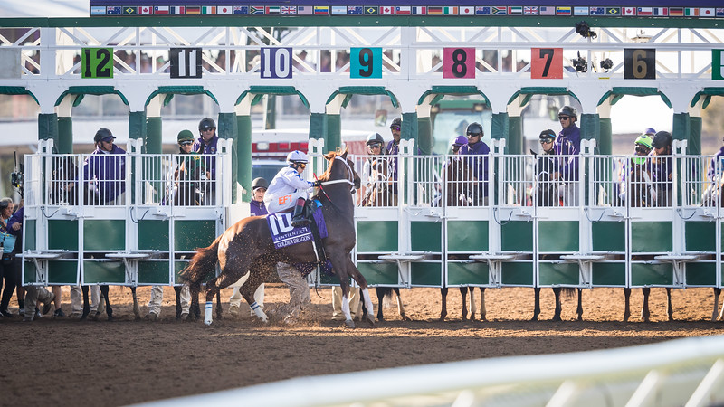 Golden Dragon breaks through the starting gate before the BC Juvenile.