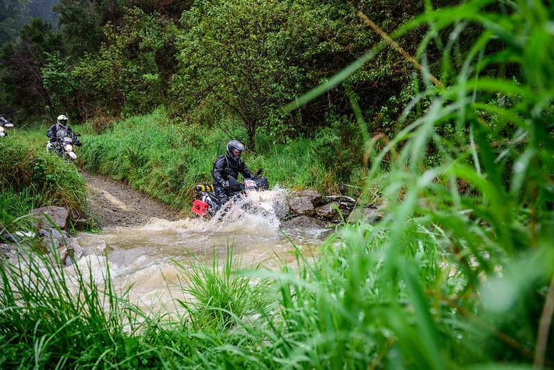 2019 KTM New Zealand Adventure Rallye (118).jpg