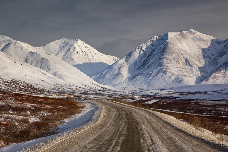 Arctic Wildlife and Landscapes Photo Workshop-19.jpg