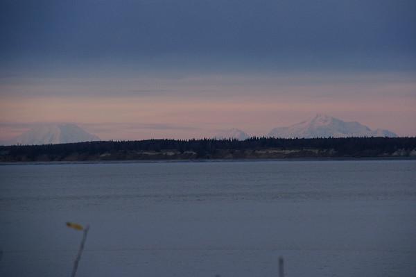 10/29/2011 - Denali/Anchorage/Bull Moose