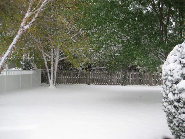 Snow, 2009-10-10