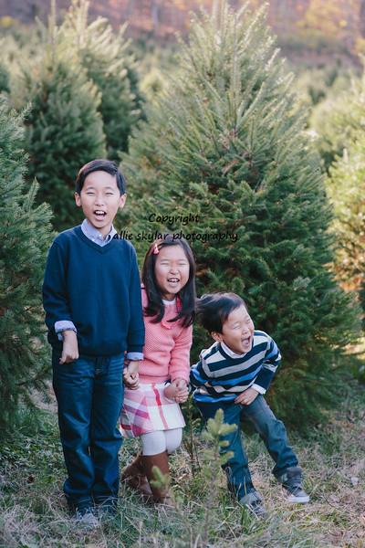 Kim holiday-35.jpg