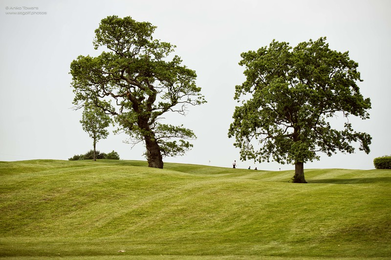 AT Golf Photos by Aniko Towers Vale Resort Golf Course Wales National-34.jpg