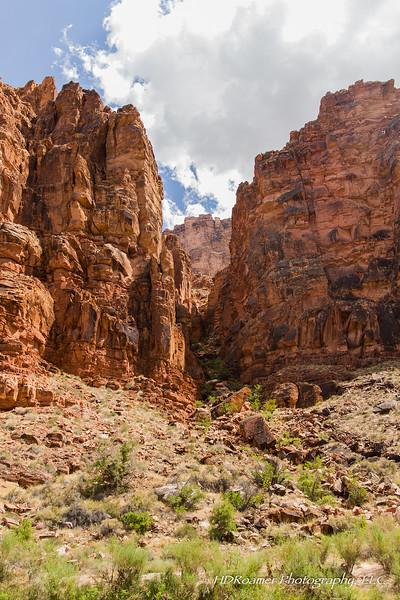 Grand-Canyon-2019-07-41.jpg