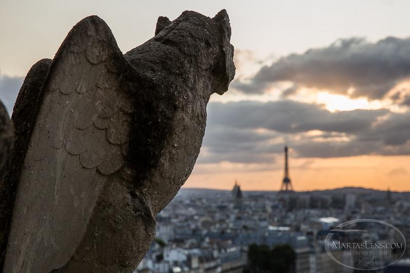 Notre Dame, Paris-17.jpg