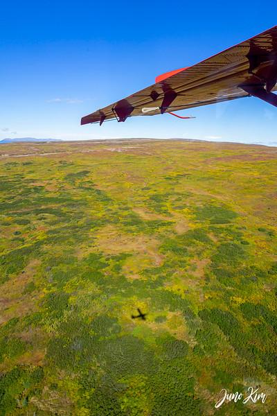Rust's_Beluga Lake__DSC8794-2-Juno Kim.jpg