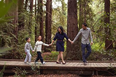 Redwood Grove 9/30/18
