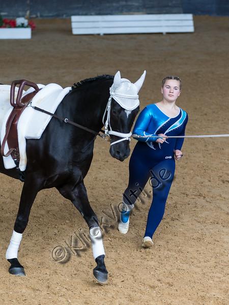 Pferd_Inter_2019_0473_klickvolti.jpg