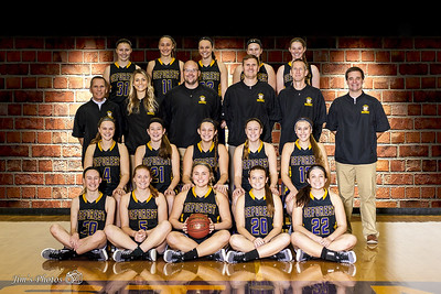 2016-17 DeForest Girls Basketball Team