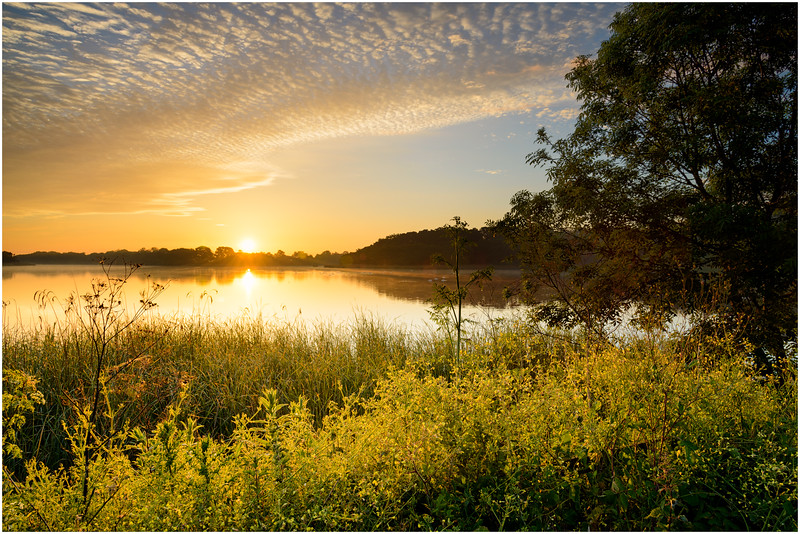Sunrise on the Norfolk Broads.jpg