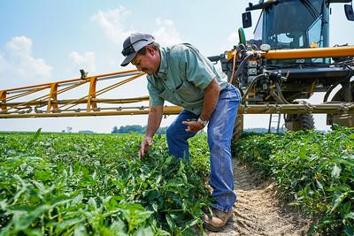 Thank a Farmer: Red Ripe Inc. (07/06/2021)