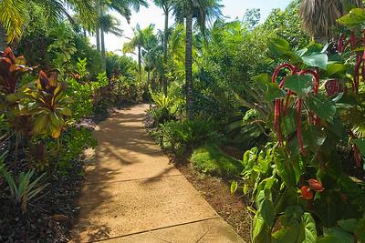 Hawaii (Kauai) - National Botanical Gardens