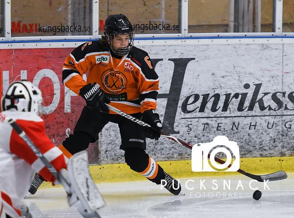 Göteborgs Ishockey Cup 2019-01-03: Brinkens IF - Skara IK