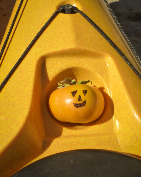 My persimmon Jack-o-lantern, which rode in the little compass spot, all the way from, and back to, Sacramento.