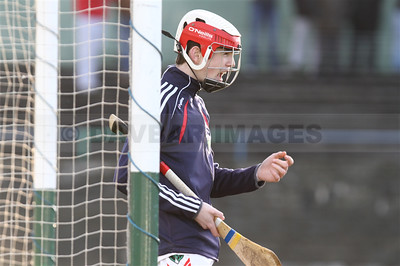 Glenealy MHC Final 2014