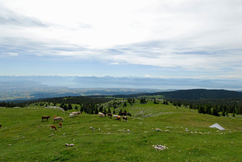 070626 7272 Switzerland - Geneva - Downtown Hiking Nyon David _E _L ~E ~L.JPG