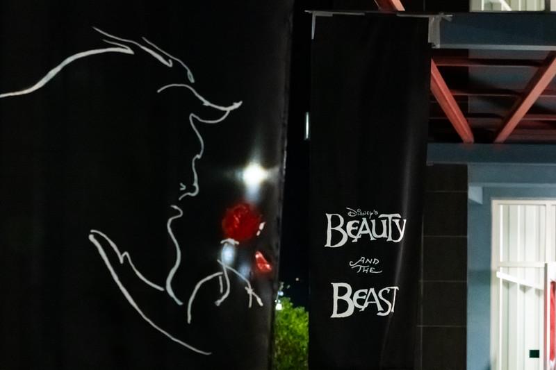 Beauty and the Beast 2018-11-08-9907.jpg
