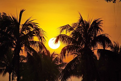 Sunrise at Chinese Garden