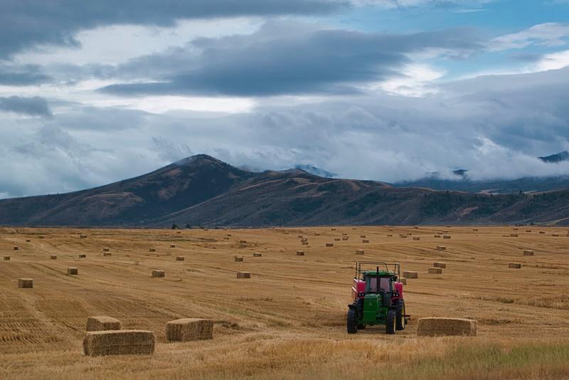 Idaho Hay Season
