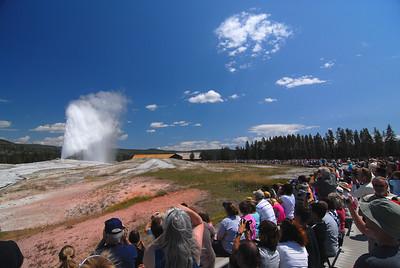 Yellowstone - August 2009